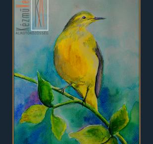 rigó akvarell