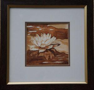 diópác akvarell virág tavirózsa festmény